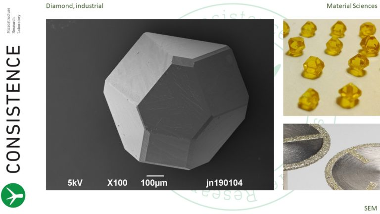 SEM image of industrial diamonds at consistence microstructure research laboratory