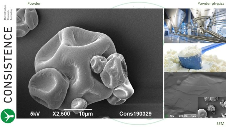 SEM imaging of dairy powders at low and high magnifications. By Jaap Nijsse, www.Consistence.nl