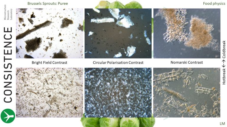 Light Microscopy analysis of hotbreak vs coldbreak brussels sprouts puree. Bright Field Contrast, Circular Polarisation Contrast, Differential Interference Contrast (Nomarski contrast). Consistence Microstructure Research Laboratory