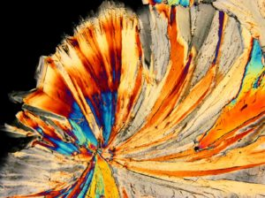Polarised Light Microscopy image of a crystallised sugar solution. Photo by Jaap Nijsse, Consistence Microstructure Research Laboratory.