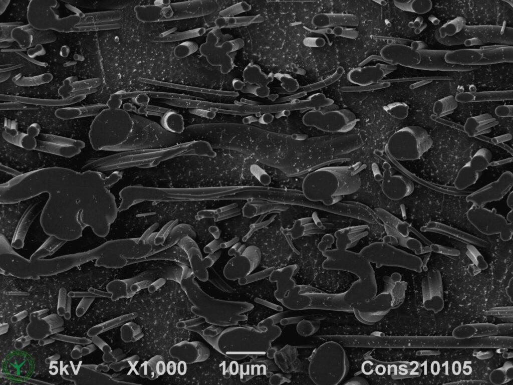 Face Mask Filter Cross Section SEM Microscopy 1000x