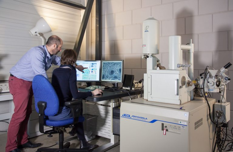 Scanning Electron Microscopy at Consistence Microstructure Research Laboratory