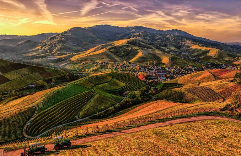 agriculture-pexels-photo-842711